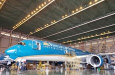 越南首个飞机维修联营体问世