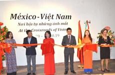 """题为""""眼神汇聚之地""""的越南与墨西哥图片展在河内举行"""
