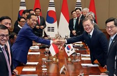 印度尼西亚呼吁韩国企业对该国电动车电池制造领域投资