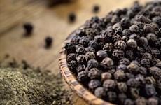 越南胡椒产品寻找出口可持续发展之路