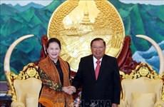越南国会主席阮氏金银圆满结束对老挝进行的正式访问