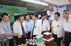 越南东南部农业与贸易展览会开幕
