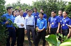 老挝人民革命青年代表团访问越南和平省