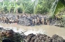 潮汐导致越南多地遭受重大损失