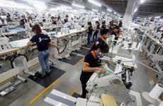 推动越南经济增长的新动力