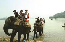 探索越南得乐省峻村之美