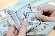 10月10日越盾对美元汇率中间价上调1越盾