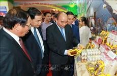 阮春福呼吁各阶层人民同心协力,共建新农村,建设富饶、美丽、文明的海防市