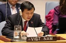 越南参与联合国大会第三委员会的人权保障和促进工作