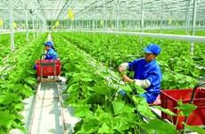 广义省批准43个农业投资项目