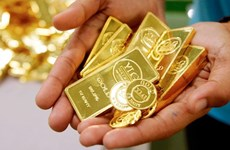 10月23日越南国内黄金价格略增