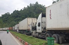 延长货物通关时间 致力解决谅山省新青口岸货物拥堵现象