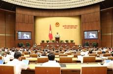 越南第十四届国会第八次会议:集中讨论两部法案