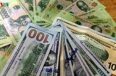 10月25日越盾对美元汇率中间价保持不变