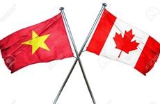 加拿大学者对越南与加拿大合作前景充满信心