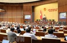 越南第十四届国会第八次会议:国会代表分组讨论三部法案