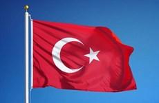 越南领导人向土耳其领导人致国庆贺电