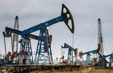 国际能源机构:未来几年东南亚将实现化石燃料净进口