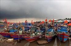 欧洲议会国际贸易委员会主席:越南为解除欧委会黄牌警告作出不懈的努力