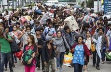 柬老缅携手保护移民劳工的权益