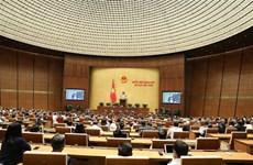 越南第十四届国会第八次会议:充分挖掘少数民族地区和山区的潜力与优势