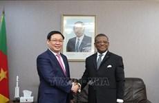 越南政府副总理王廷惠访问喀麦隆