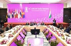 第35届东盟峰会:阮春福总理出席第16届东盟-印度领导人会议