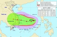 越南2019年第6号台风:10级阵风向东部转移