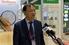更多越南货品通过正贸方式向中国出口
