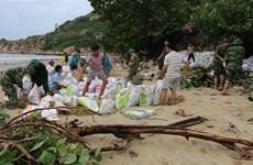 越南政府总理就第六号台风防御工作作出指示