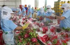 促进越南与意大利西西里首付之间的经贸合作