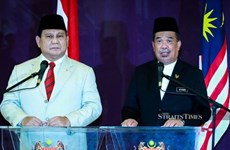 马来西亚与印尼加强防务合作