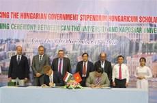 越南芹苴市与匈牙利促进教育领域中的合作