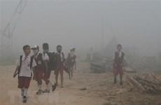 欧盟协助东盟实现泥炭地可持续利用和减少烟雾现象