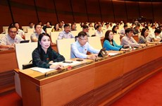 越南第十四届国会第八次会议:通过关于批准《少数民族地区、山区、特困地区的经济社会发展总体提案》的决议