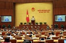 越南第十四届国会第八次会议:分组讨论两部法案 表决通过一项决议