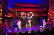 欣赏下龙市传统艺术表演活动