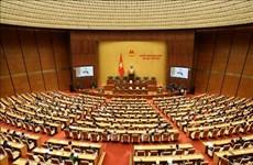 越南第十四届国会第八次会议通过《劳动法(修正案)》