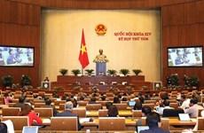 越南第十四届国会第八次会议:健康竞争  吸引投资者