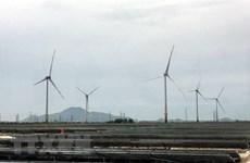 爱尔兰能源公司执行总裁:强化与越南企业的合作
