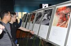 越南和日本战争受难者图片展在胡志明市举行