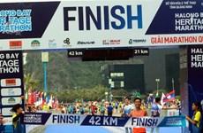 2019年下龙湾国际遗产马拉松大赛吸引3000余名选手参加