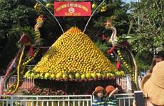 2019年第五次和平省高峰橙子节热闹举行