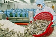 越南虾类对美国出口有望提升