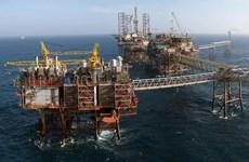 今年前11月越南原油开采量达逾1200万吨