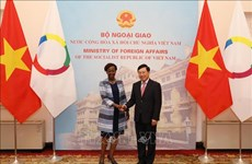 越南政府副总理兼外长范平明与法语国家组织秘书长会谈