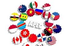 亚太经合组织成员经济体同意加强合作