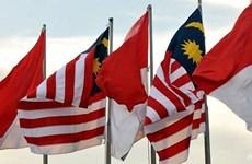 马来西亚和印度尼西亚同意使用无人机巡逻边境