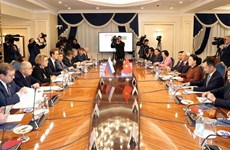 越南国会主席阮氏金银与俄罗斯联邦委员会主席举行会谈
