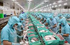 提高查鱼出口价值 有效适应世界市场